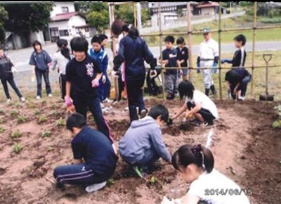 子ども会も交えての花壇の植栽作業