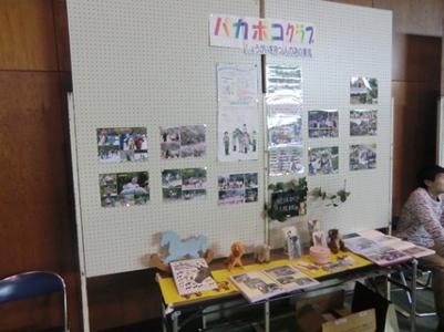 団体さんによっては活動の紹介などの展示を行っている所もありました。(写真はパカポコクラブさん)