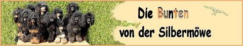 """Zuchtstätte unserer Stammhündin """" Donna Romina """" vom A- und B-Wurf"""