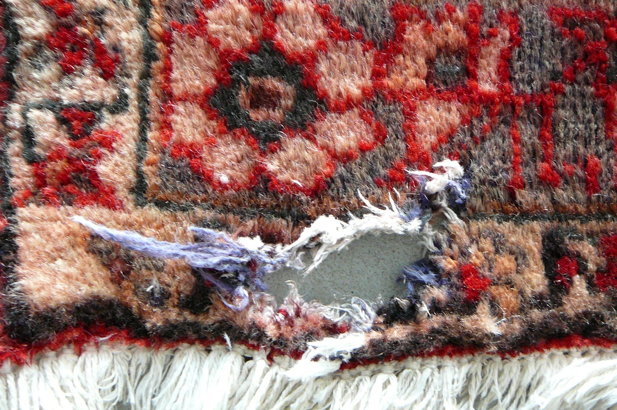 Riparazione e ricostruzione buco su tappeto persiano Shiraz 100% di lana