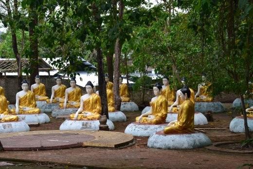 ... oder gar in ganz großen Buddha-Grupppen.