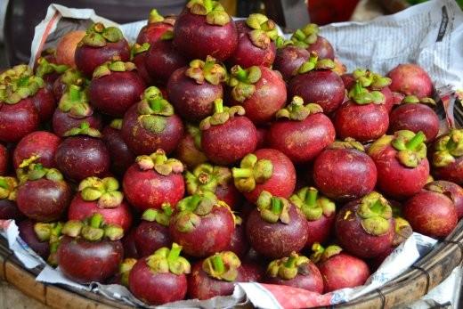 Garcinia Mangostana. die Schale wurde früher zum Färben der Mönchsroben in Myanmar und Thailand verwendet.