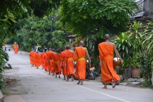 Und nach 20 Minuten ist der Spuk beendet und alle Beteiligten verteilen sich wieder: zurück ins Kloster. Zurück ins Bett. Zum Frühstück.