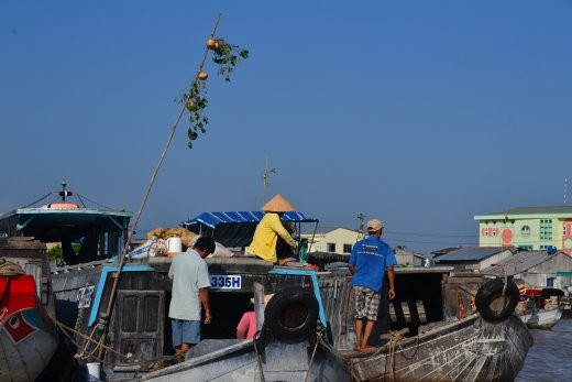 Auf diesem Boot gibt es Rüben zu kaufen.