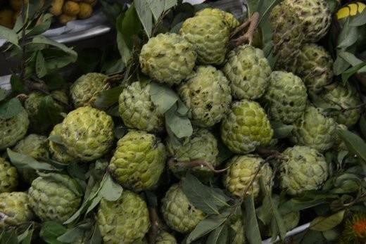 Annona Squamose. Bei uns heiß er Zimtapfel, Rahmapfel oder Süßsack. Den sauersack gibt es auch, er heißt hier Mang Cau und schmeckt besonders als Saft hervorragend.