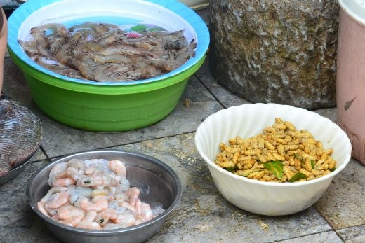 Maden und Shrimps.