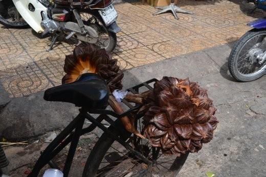 Noch mal die Früchte einer Palmenart. Innen: glibberig und weißlich. Schmeckt ein bissle nach nix.