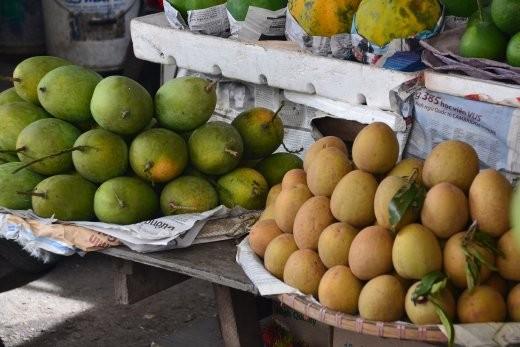 Mango und Sapotilla.