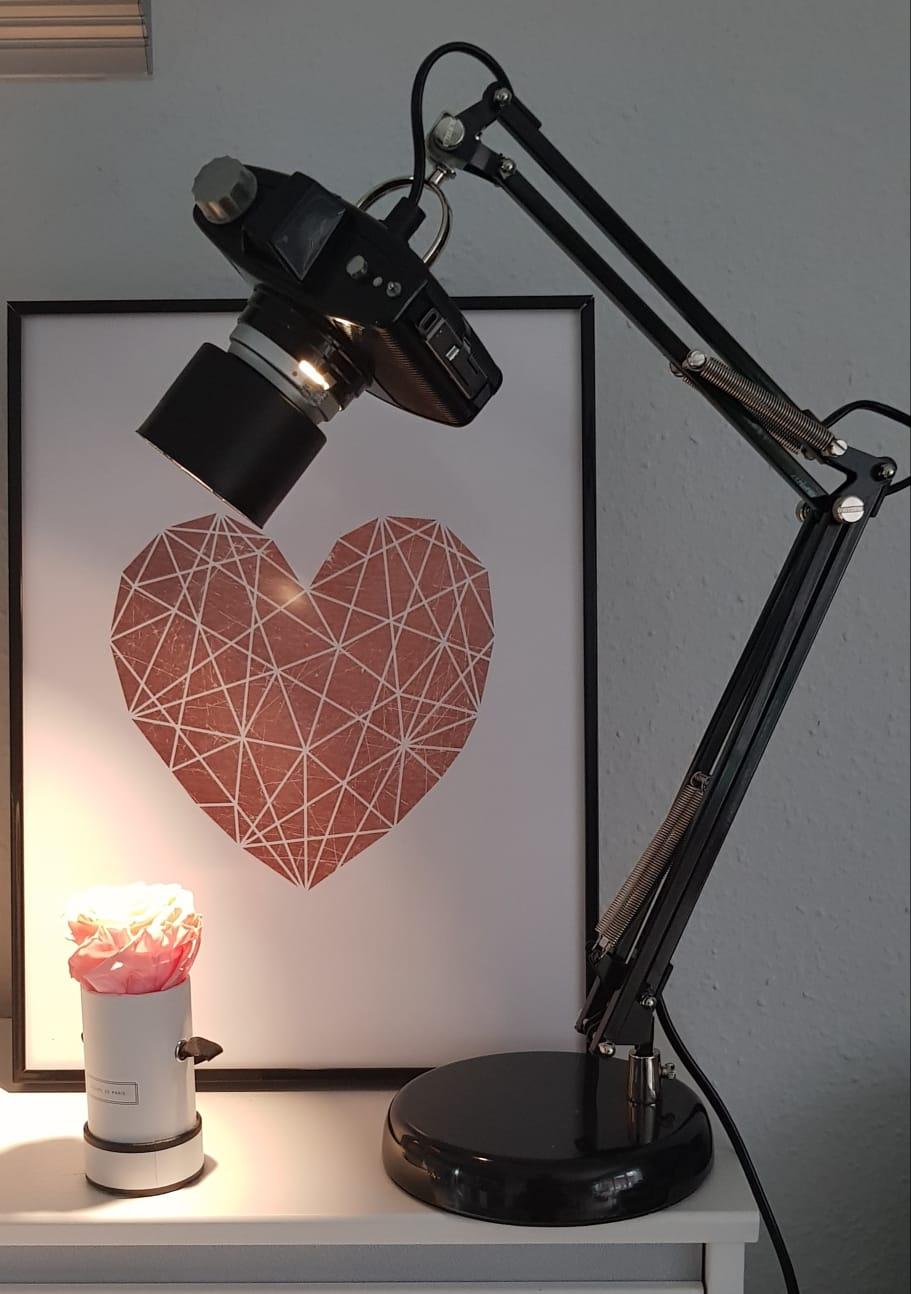 Neues Leben für den alten Fotoapparat als Lampe