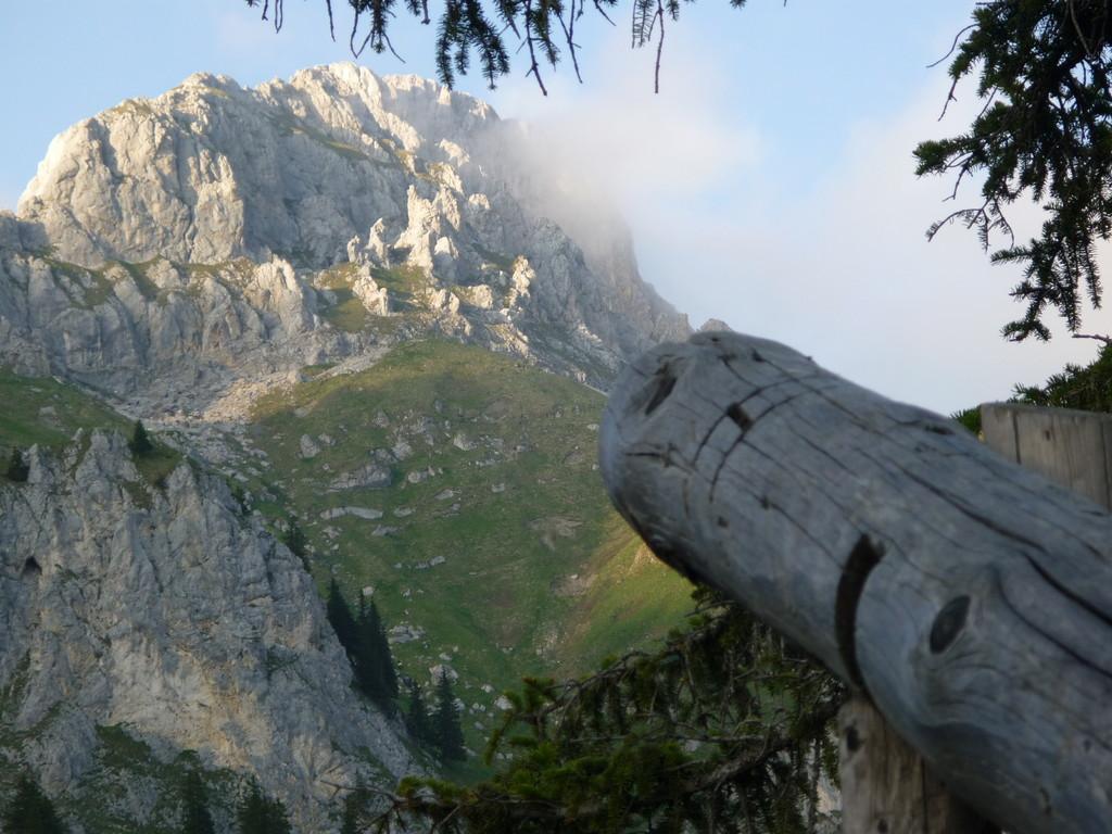 Blick vom Aufstieg auf die Felsen im Tannheimer Tal