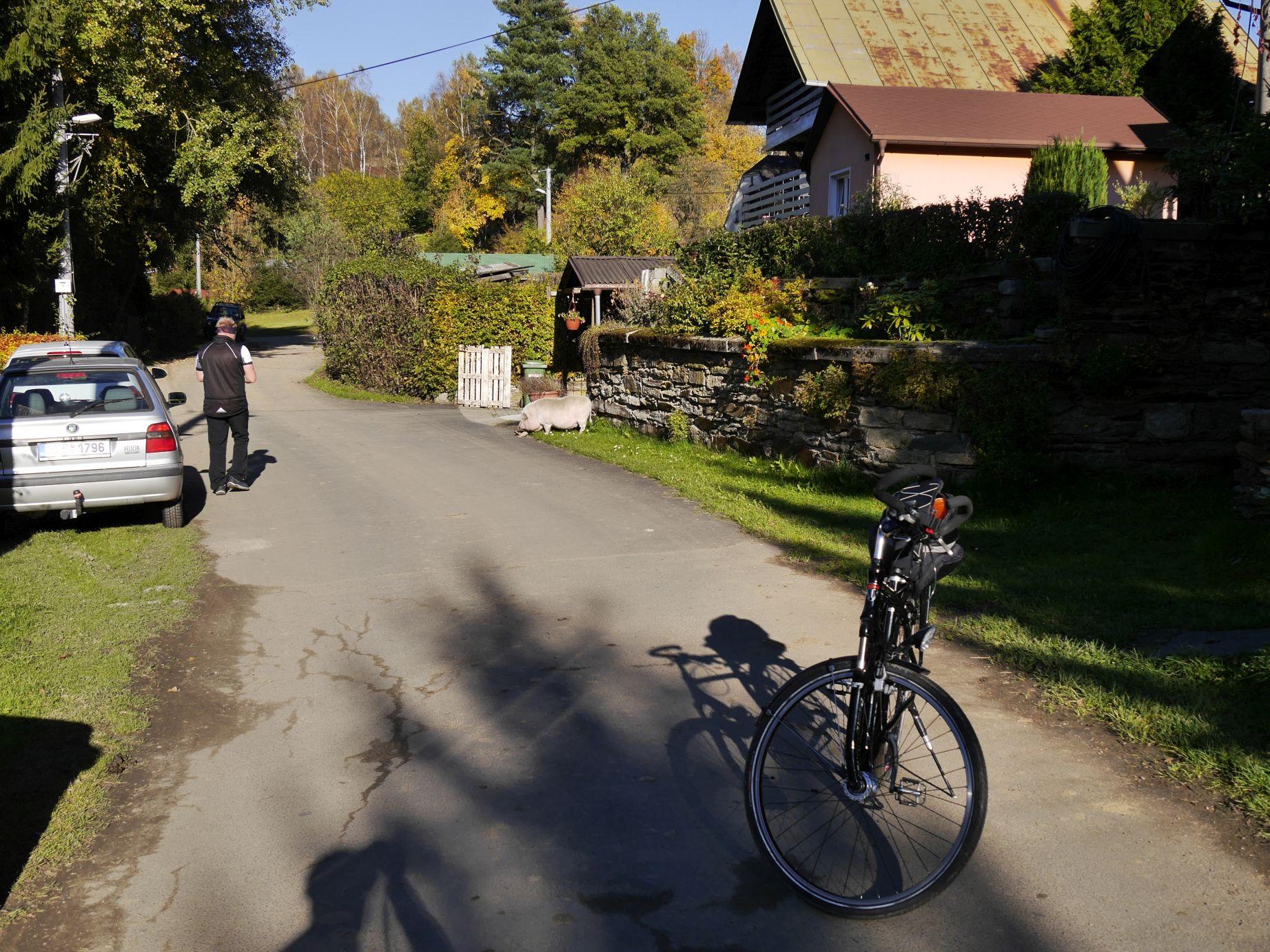 Dolni Paseky (Niederreuth)