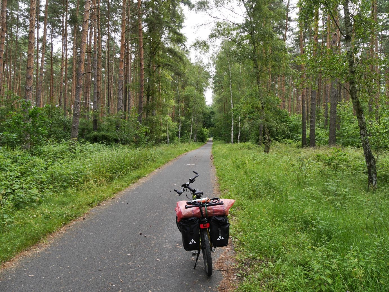 im Naturpark Barnim