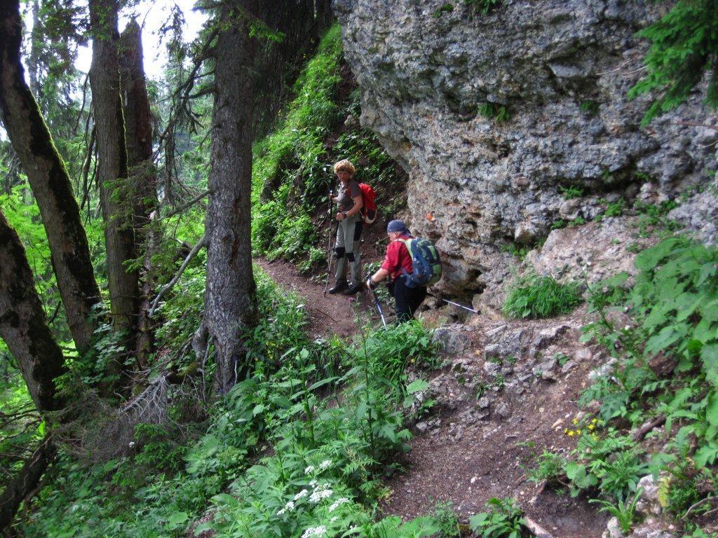Wanderung bei Schloß Linderhof - Ammergauer Alpen