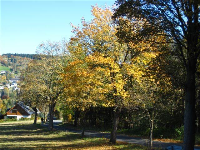 Wanderung zwischen Kraslice und Aschberg
