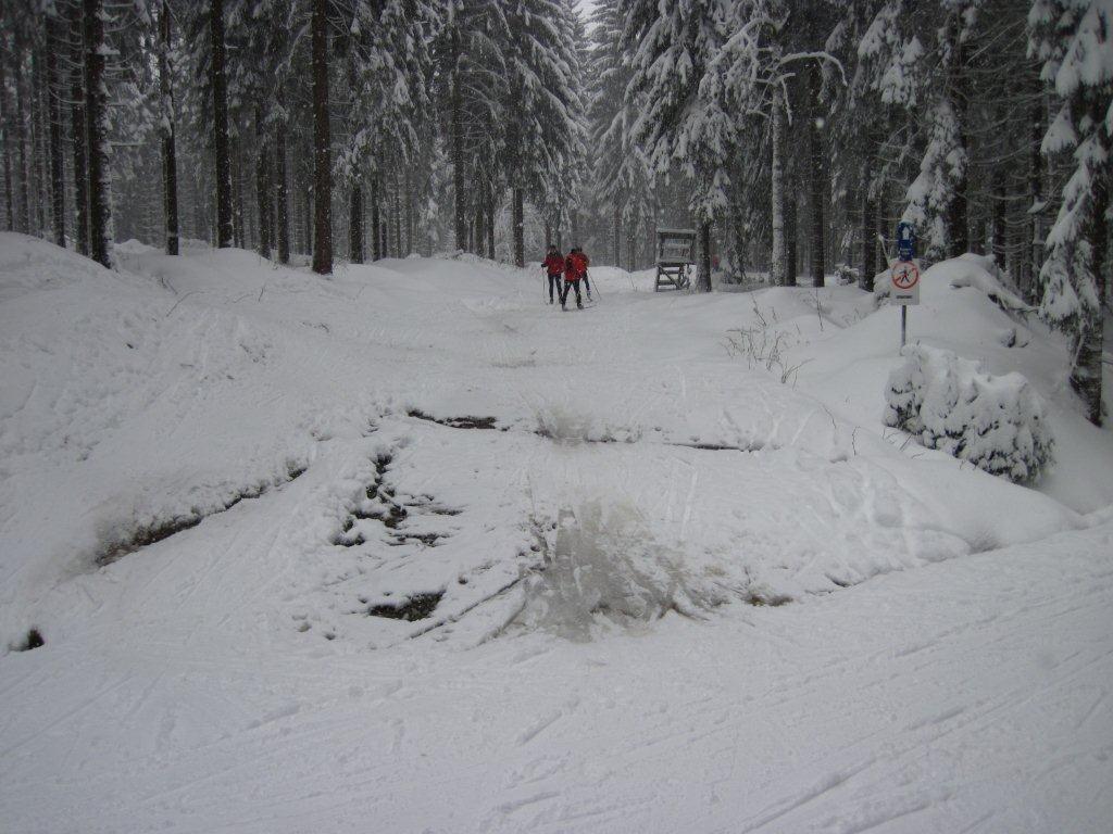 Kammloipe Mühlleithen - Aschberg, Zustand Sonntag 08.01.2012
