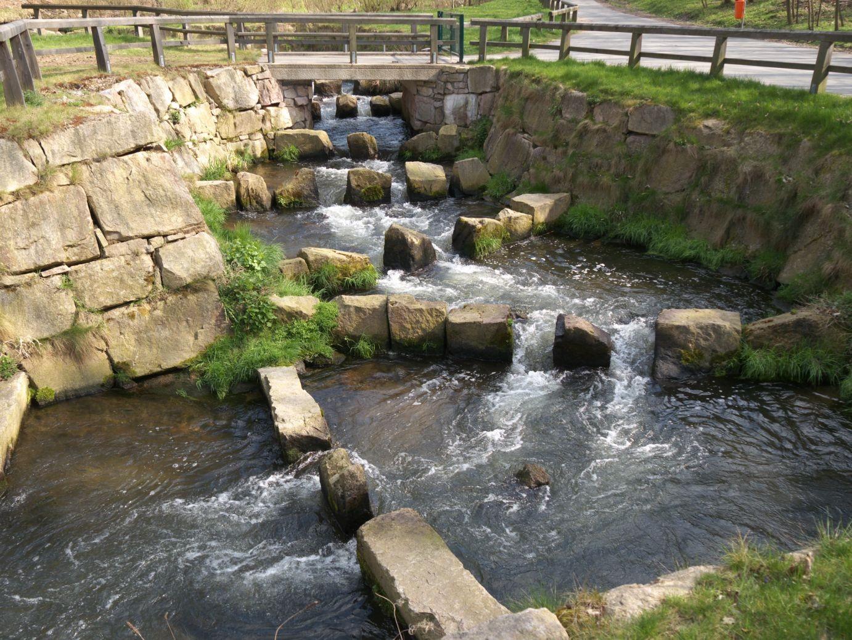 Fischtreppe im Schwarzwassertal