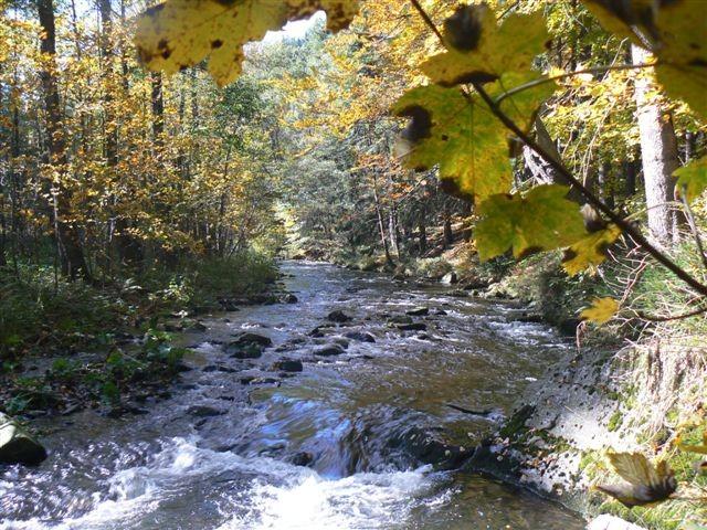 kleine Wanderung  durchs Tal der Preßnitz