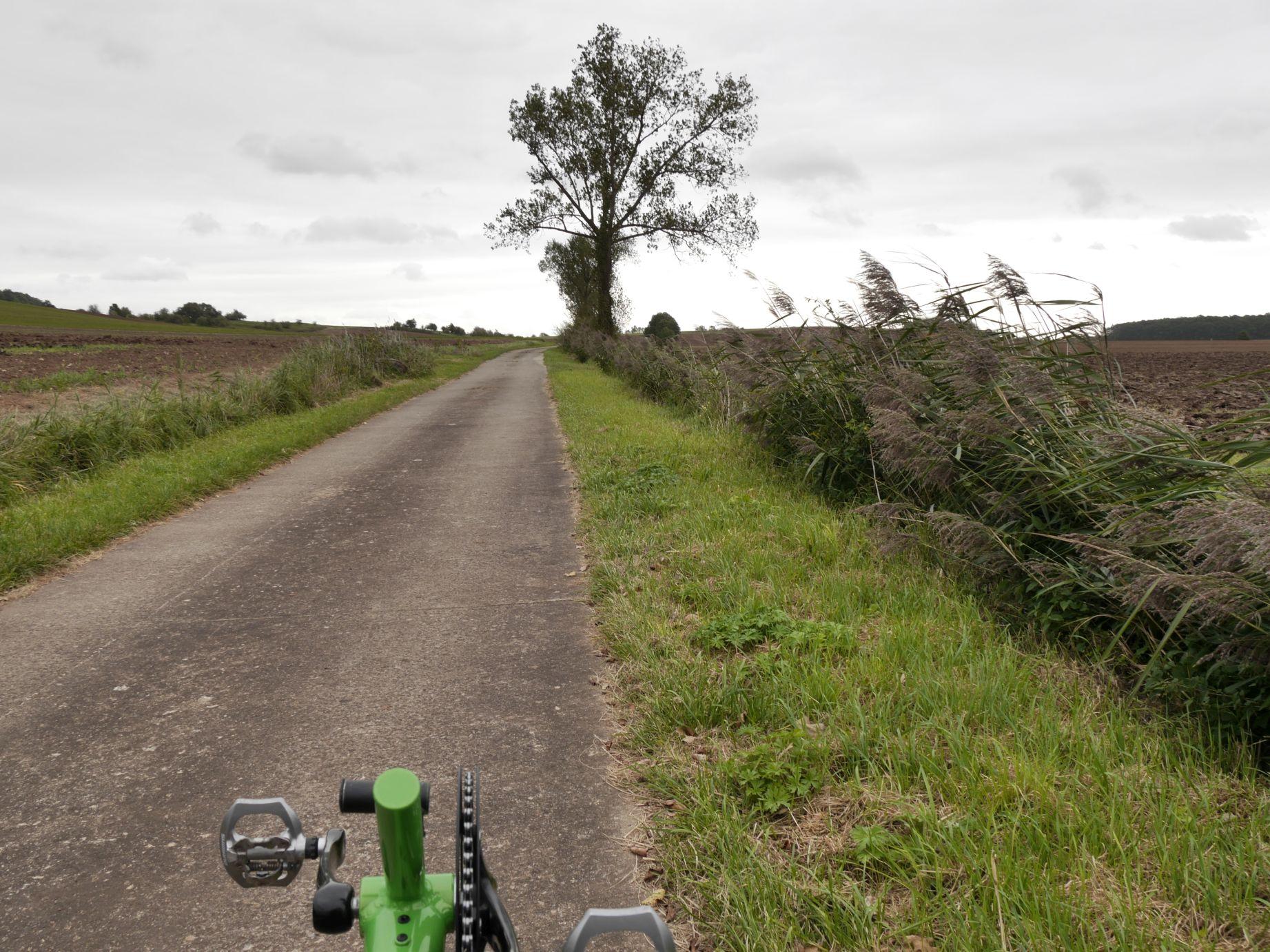 Weg zur nördlichen Saalequelle
