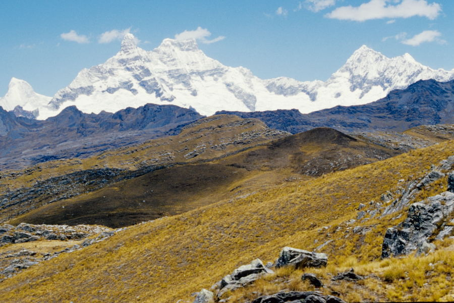 Nevado Chacraraju 6112m (Cordillera Blanca)
