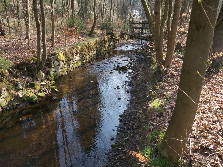 das alte Floßgrabensystem