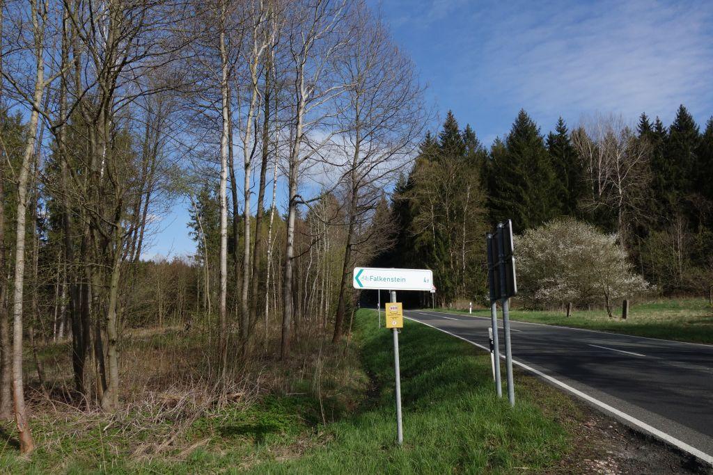 auf dem Fahrradweg zurück nach Falkenstein