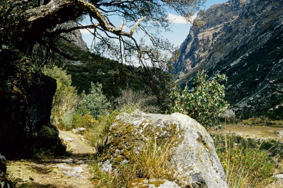 Quebrada Cojup (Cordillera Blanca)