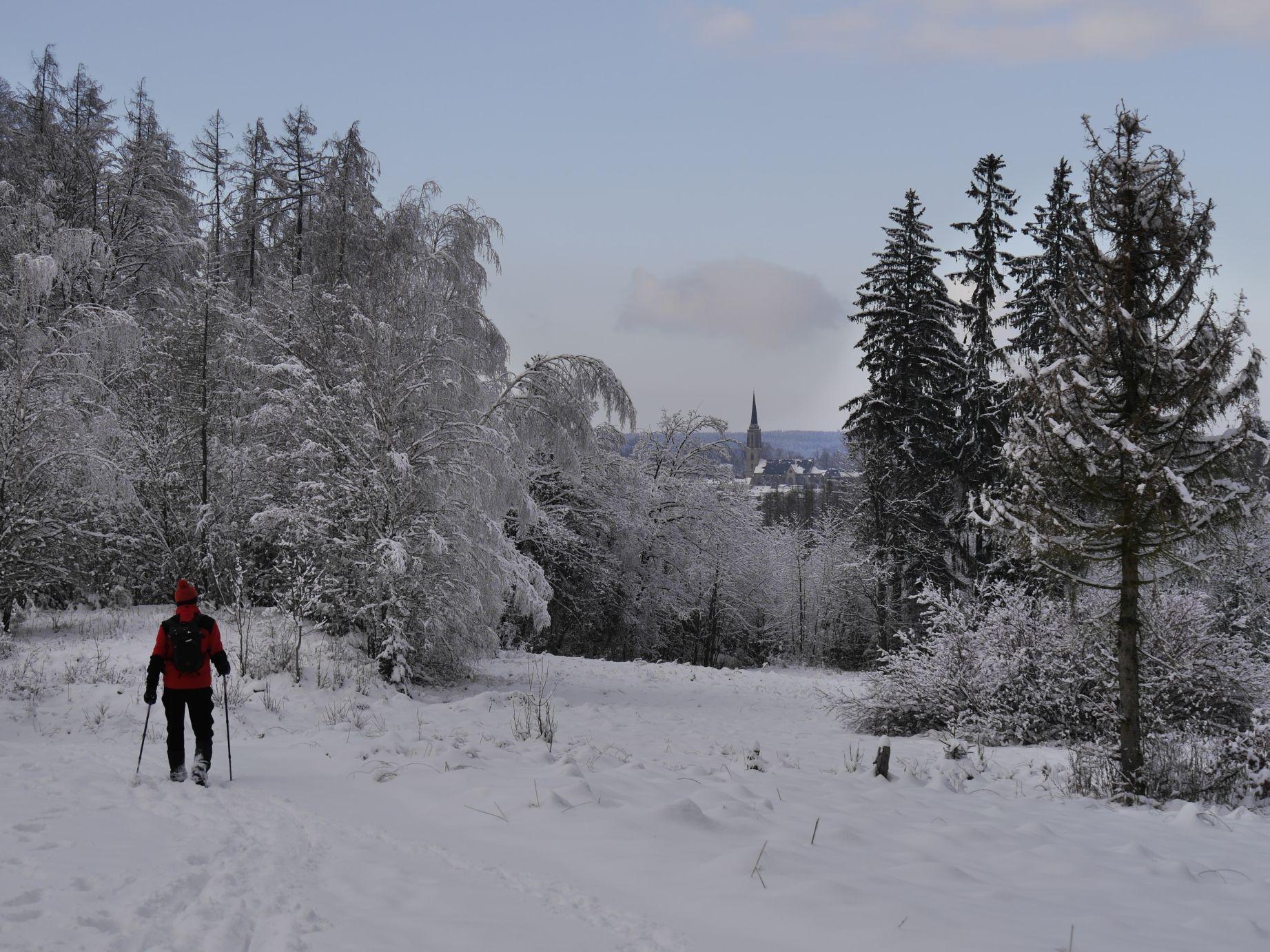 Weg in Richtung Talsperre Falkenstein