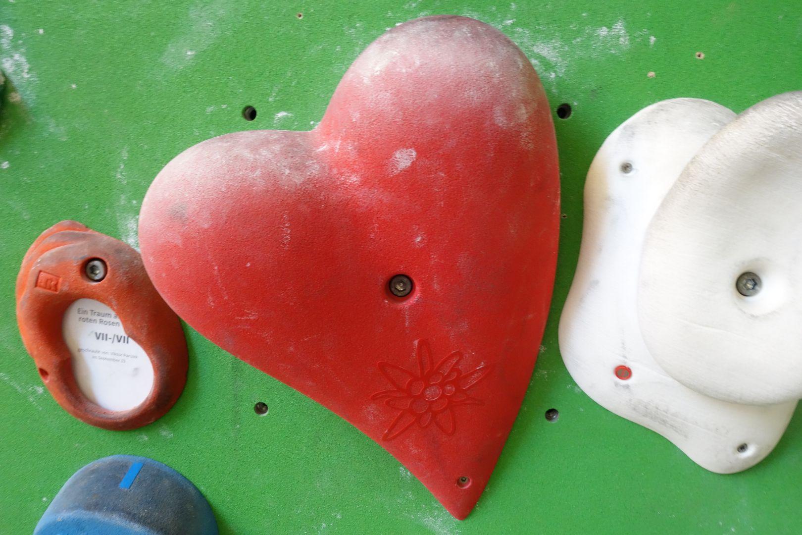 wir lieben die SBB Kletterhalle in Dresden