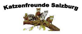 Katzenfreunde Salzburg