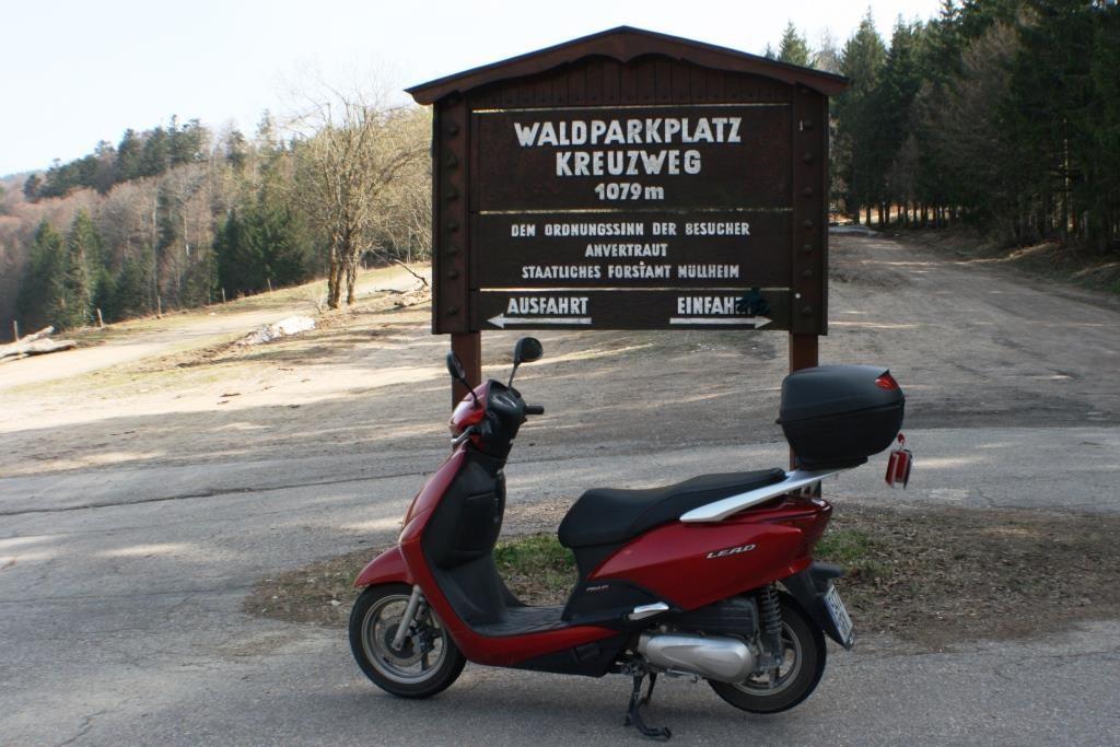 Reina im Schwarzwald.