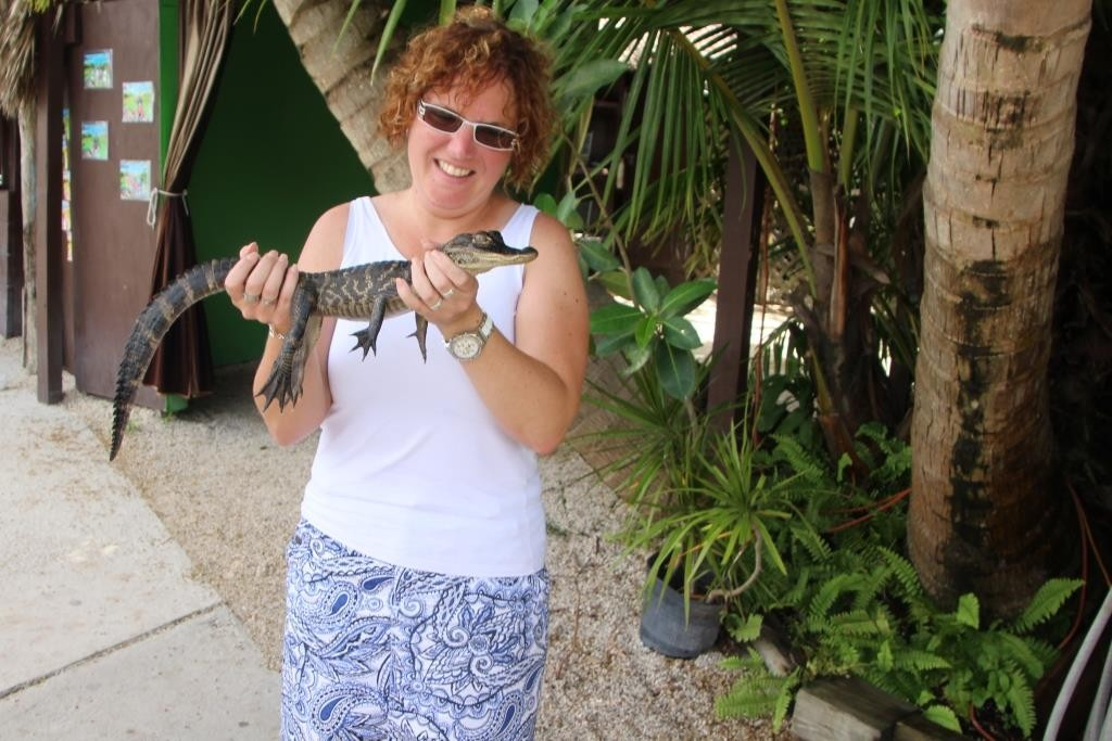 Das Alligatorbaby und ich