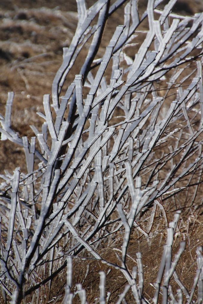 Wasserdampf wird bei diesen Temperaturen schnell zu Eis