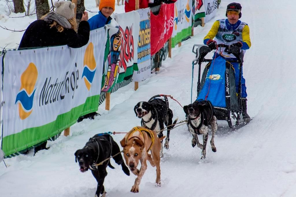 Mikael Högberg aus Schweden gibt mit seinen Hunden in der 4er-Klasse richtig Gas.