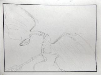 Kentosaurus; gezeichnet von Anton