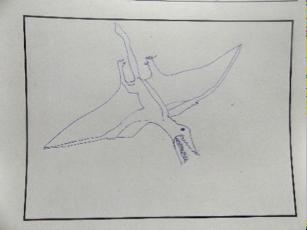 Pterosaurier (Flugsaurier); gezeichnet von Chi Thong