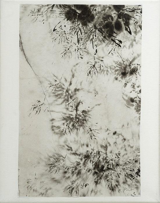 """Elisabeth POIRET """"Sans titre n°5"""" technique mixte sur toile 24 cm x 30 cm 250 €"""