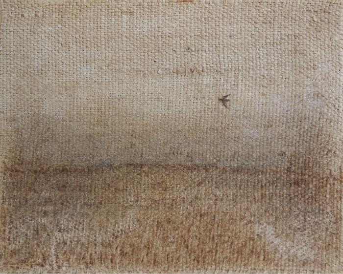 """Christian RONCERAY """"Seul, l'oiseau VII"""" technique mixte sur toile 30 cm x 24 cm 240 €"""