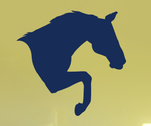 Bounding Horse wall art decal