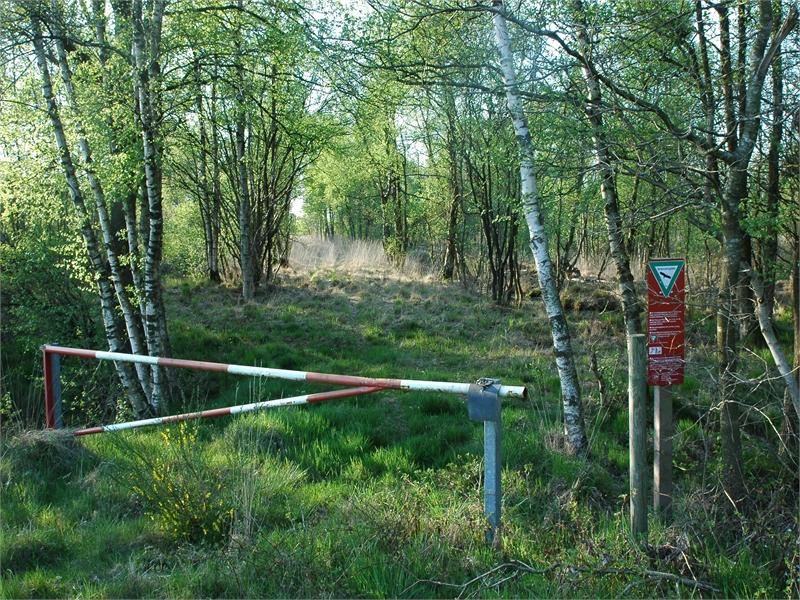 FFH-Gebiet Kollrunger Moor und Klinge, © Michael Steven
