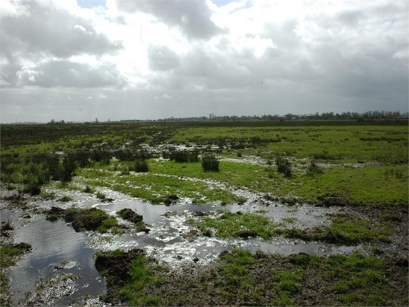 Naturschutzgebiet Groen Breike, © Michael Steven
