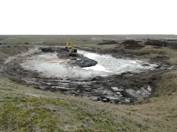 Instandsetzung eines Kreuzkrötengewässers auf Spiekeroog im Februar 2018