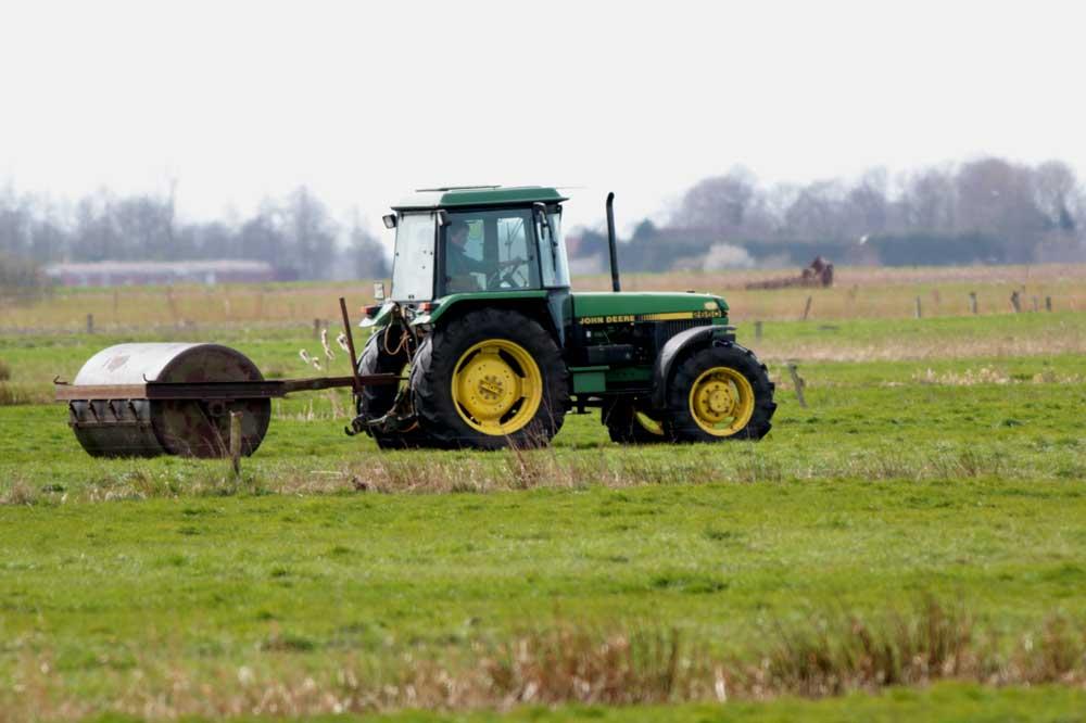 Auch das Walzen von Wiesen macht vielen Bewohnern den Garaus, wenn dies während der Vegetationsperiode durchgeführt wird. Foto: M. Steven