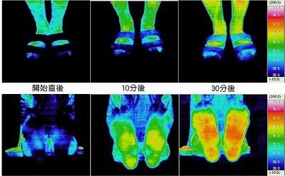 履いている間に、冷えてた足もぽっかぽか。