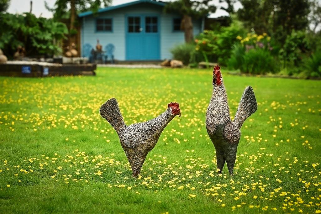 English Chickens - Powertex