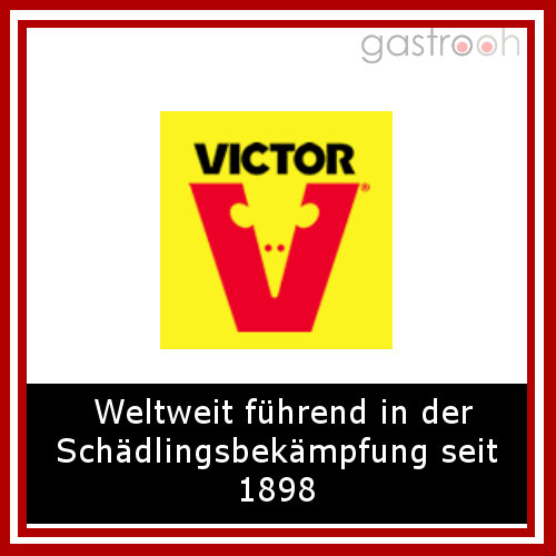 Victor Fallen