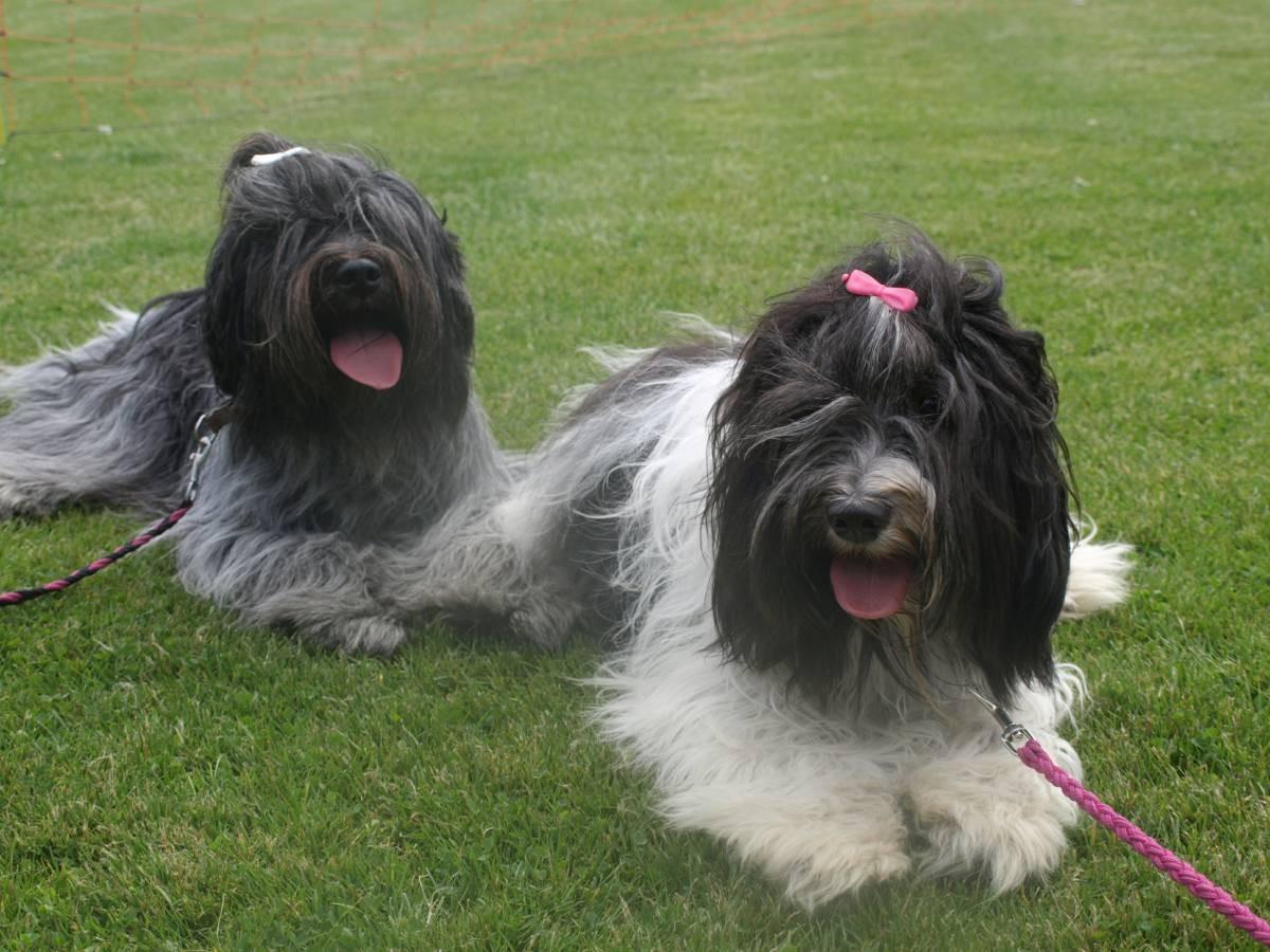 Djeanna-Ly und Eloise