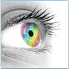 1Day Acuvue, Vision, Alcon Airoptix, Aqua Comfort, Tageslinsen, Monatslinsen