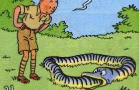 Dans la brousse, à la recherche du chemin d'accès à la Voie (extrait de Tintin au Congo - deuxième album de la série conçue par Hergé, grand initié)