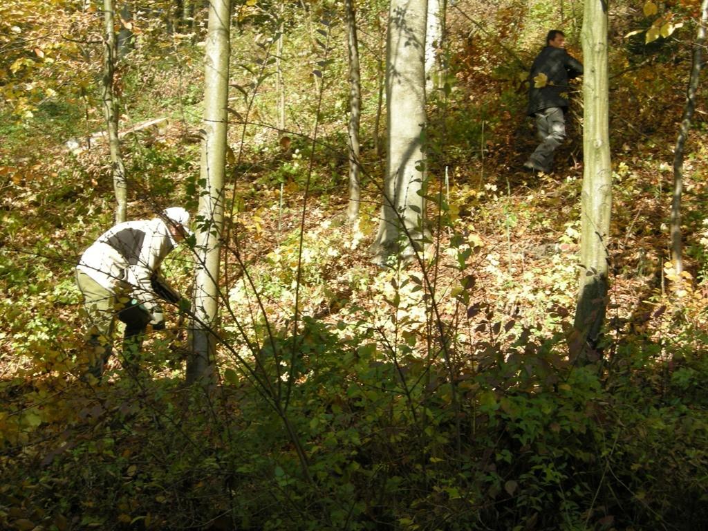 Auch Männerarbeit war gefragt                                            Foto: Gerog Kaindl