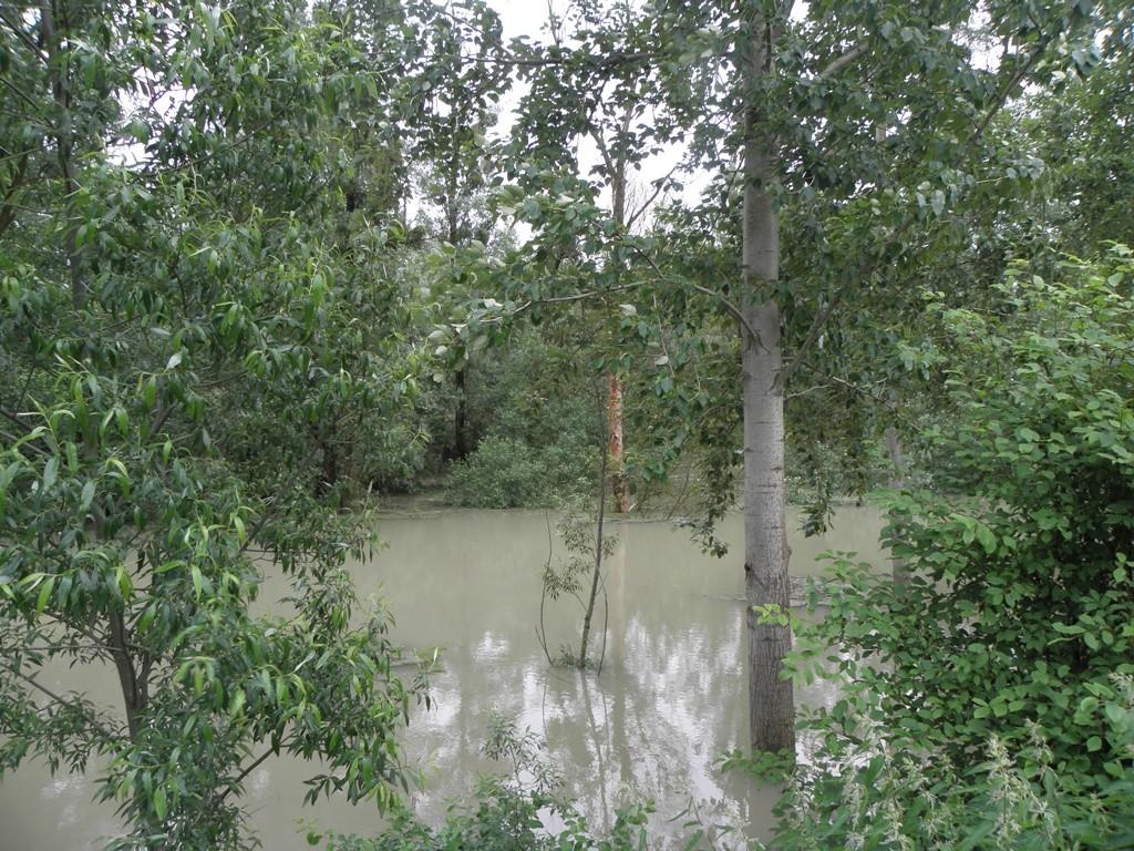 Hochwasseranschlaglinie                                              Foto: Robert Gattringer